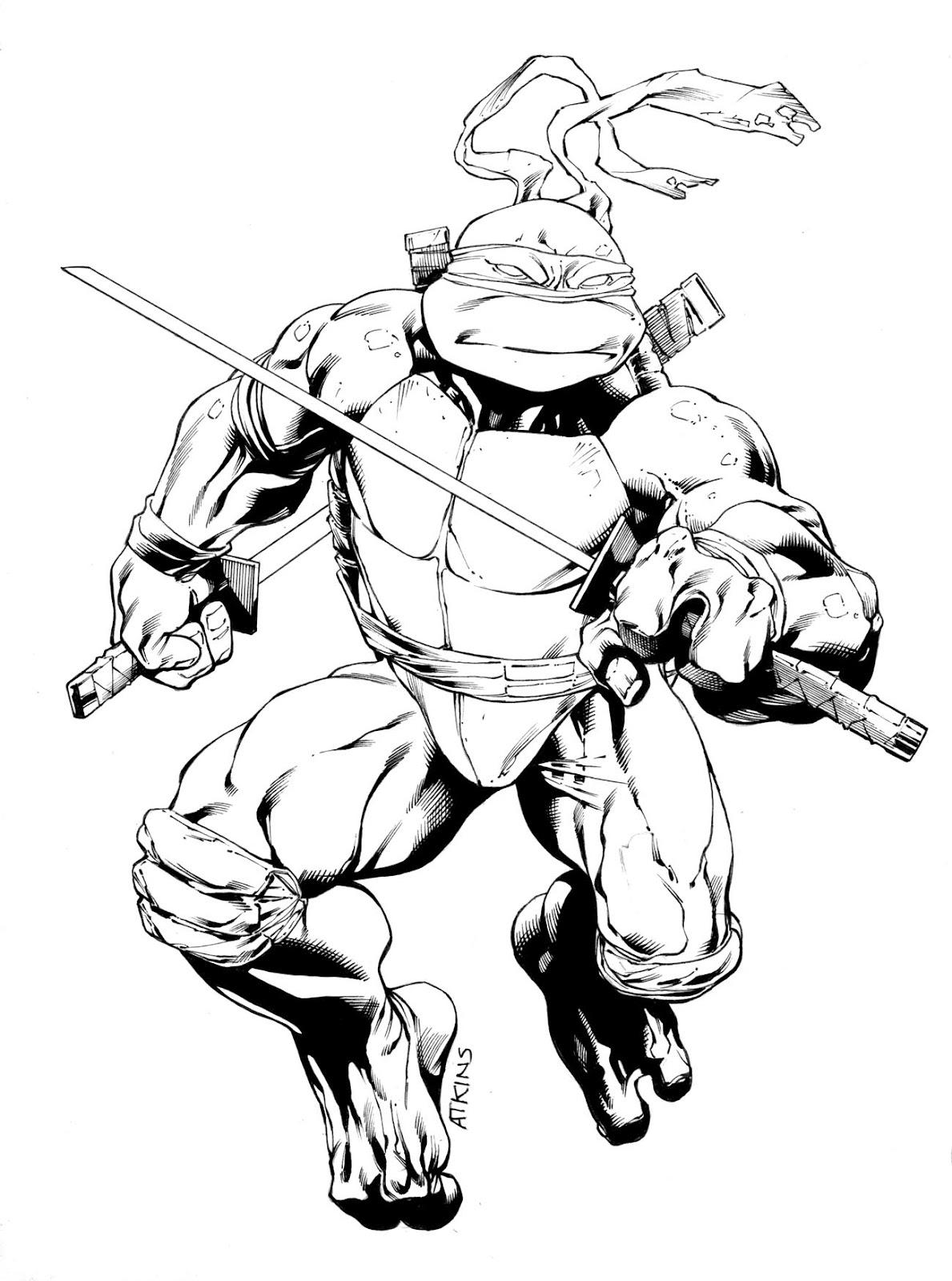 Teenage Mutant Ninja Turtles Leonardo Drawing