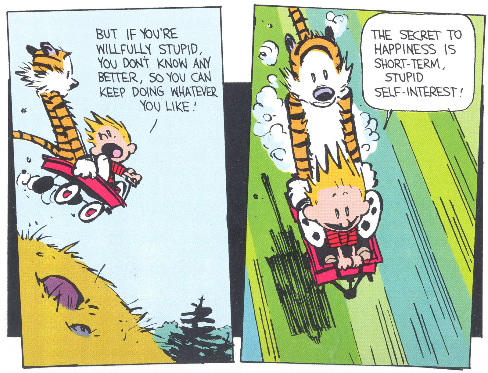 Savvy and Sage: Calvin and Hobbes: Ignorance is Bliss?
