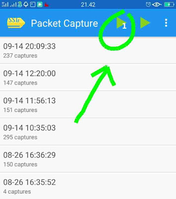 Packet capture play bot
