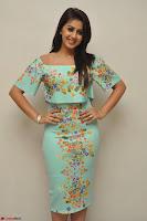 Nikki Galrani in Cute Dress Dress At Marakathamani Success Meet ~  Exclusive 018.JPG