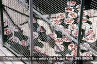 Sanitary tubs, No.2 Division, Boggo Road Gaol, Brisbane, c.1988.