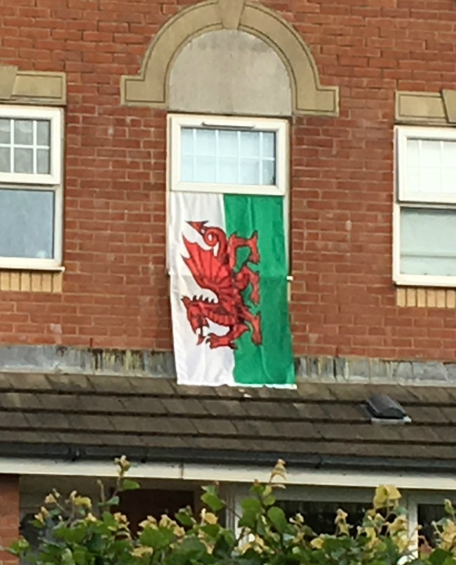 Dragons-Lions-and-rabbits-welsh-flag-with-dragon