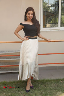 Telugu Actress Tanya Hope Stills at Appatlo Okadundevadu Audio Launch  0305.JPG