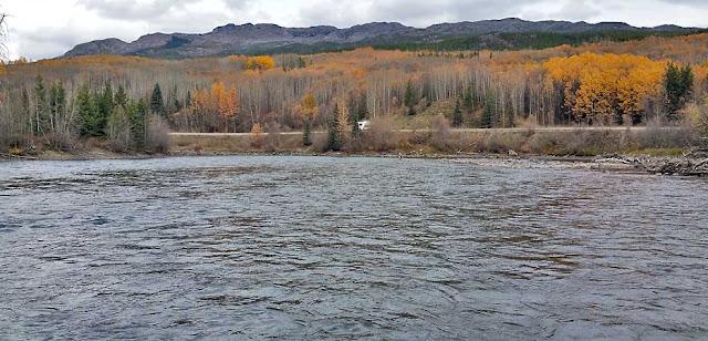 Morice River in BC