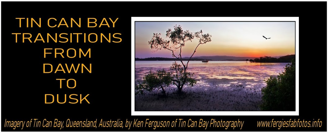 Tin Can Bay Transitions