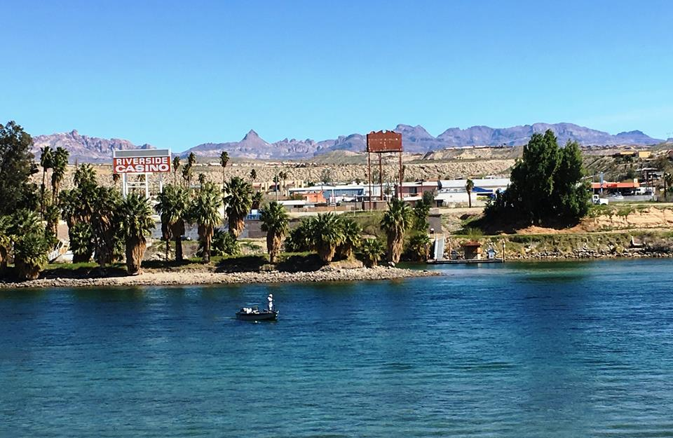 Laughlin buzz for Willow beach fishing report