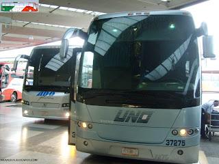 autobuses uno