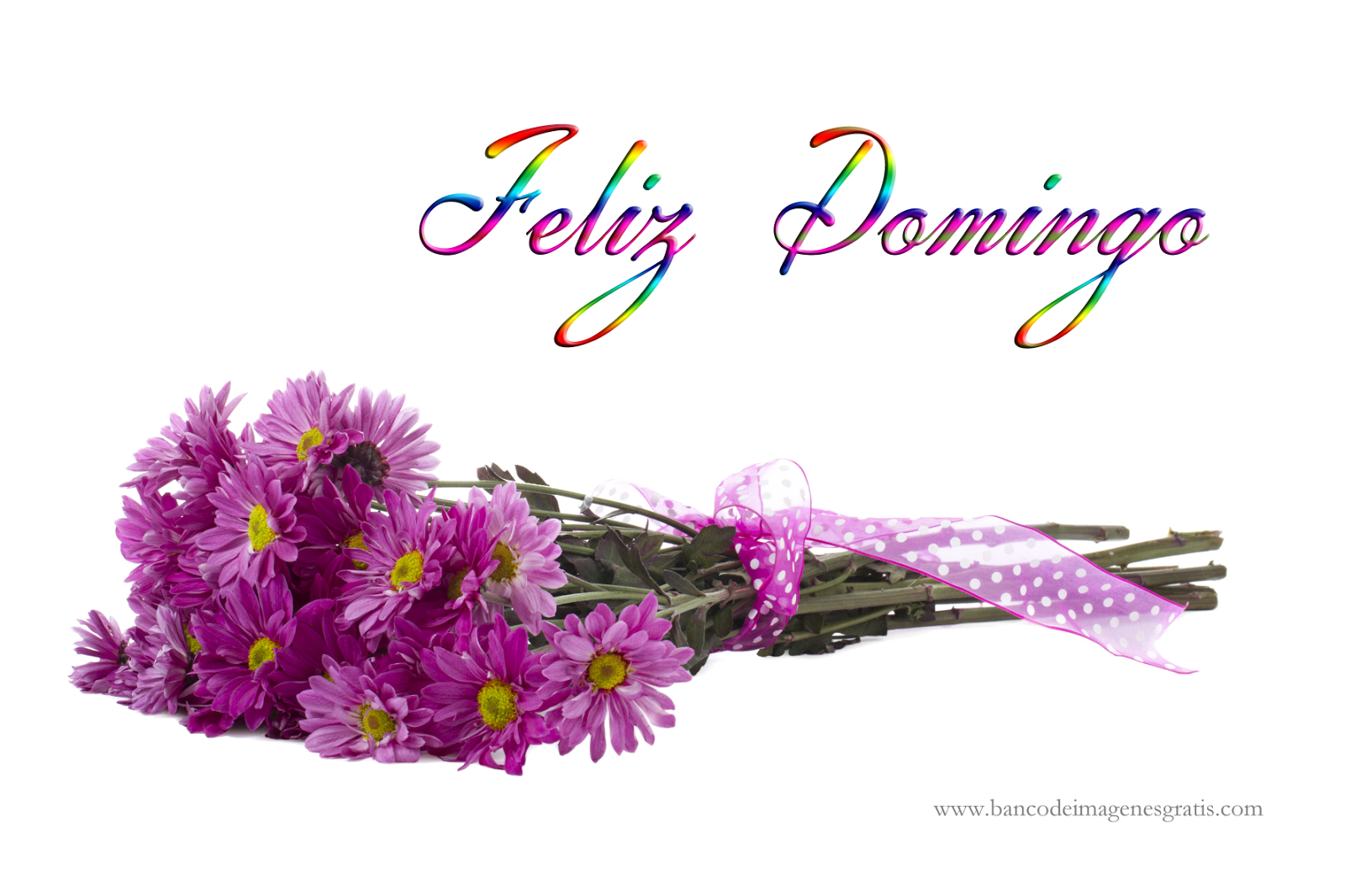 Feliz Domingo Happy Sunday