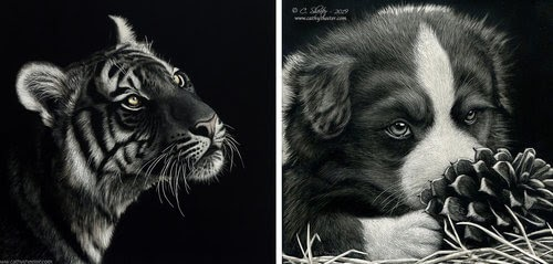 00-Cathy-Sheeter-Wildlife-Scratchboard-Drawings-www-designstack-co