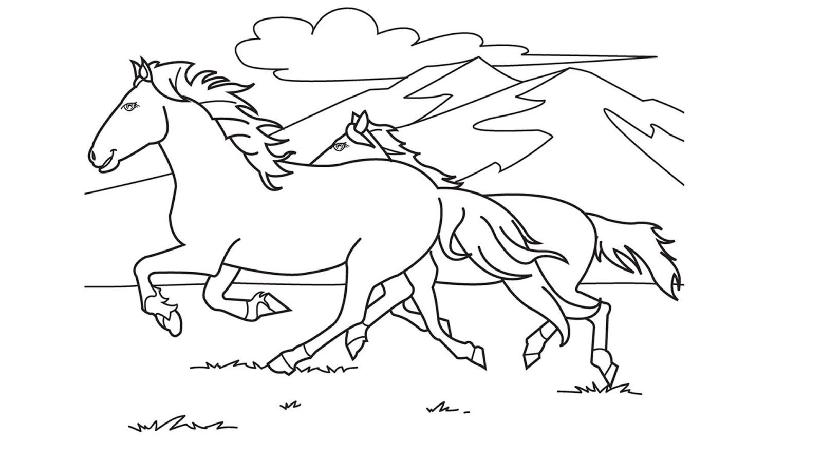 Kumpulan Sketsa Gambar Kuda Dan Pemandangan Sketsa Gambar