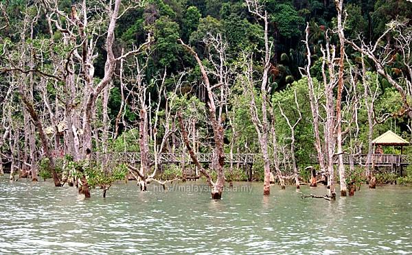 Sarawak National Parks