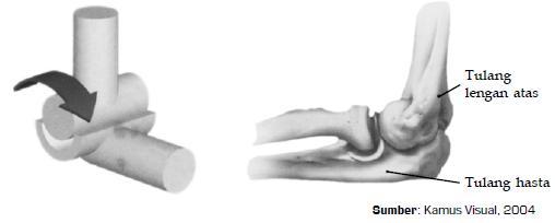 Nyeri otot punggung sebelah kiri