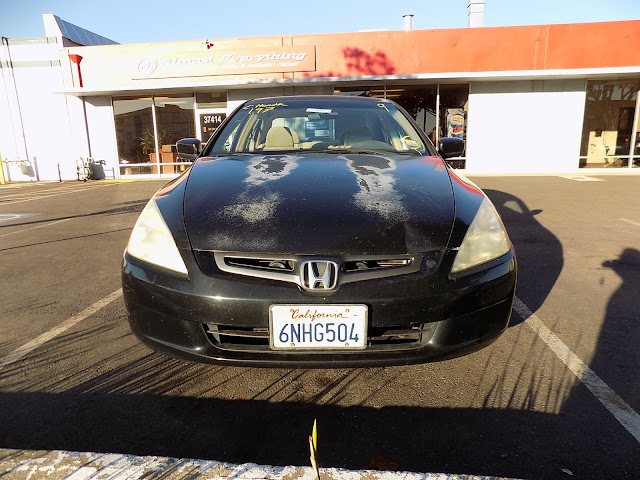 Honda Accord with microchecking and delaminating paint before overall paint job at Almost-Everything Auto Body