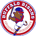 Bisons fall to Mud Hens in 10 innings, 8-7
