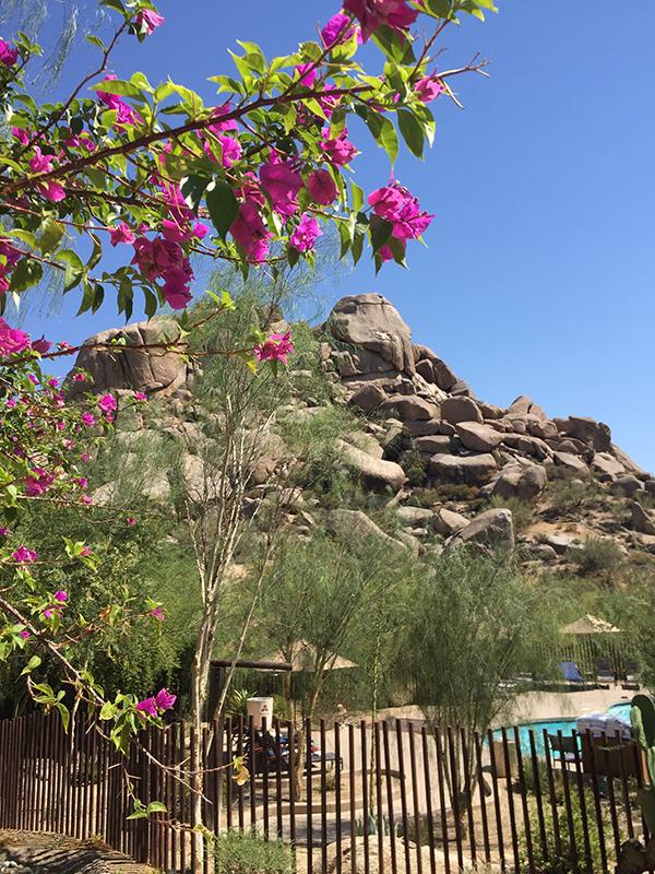 Scottsdale Spa Day: The Boulders Resort - iamlittlek.com