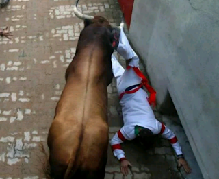 A man tossed by a bull in the Spain Popular Bull Run Festival