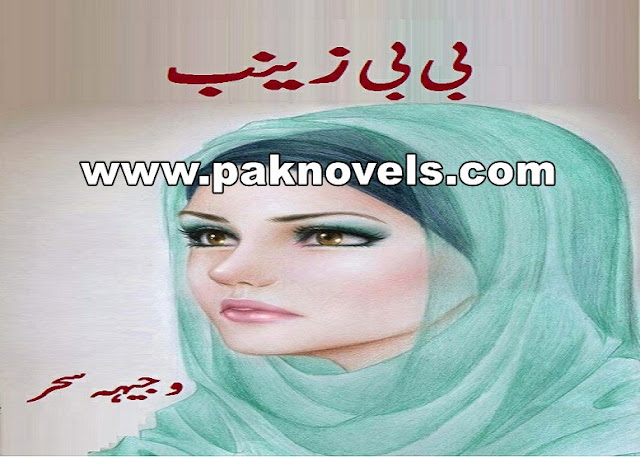 Bibi Zainab Novel