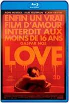 Love (2015) HD 720p Subtitulada
