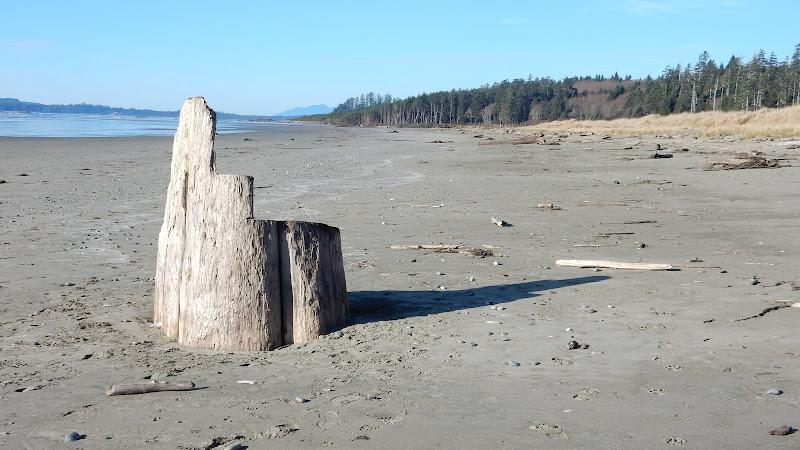 Vast stretches of sand (2015-11-21)