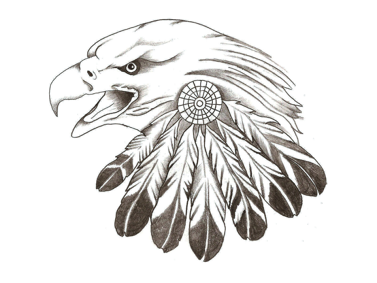 free designs feather of eagle tattoo