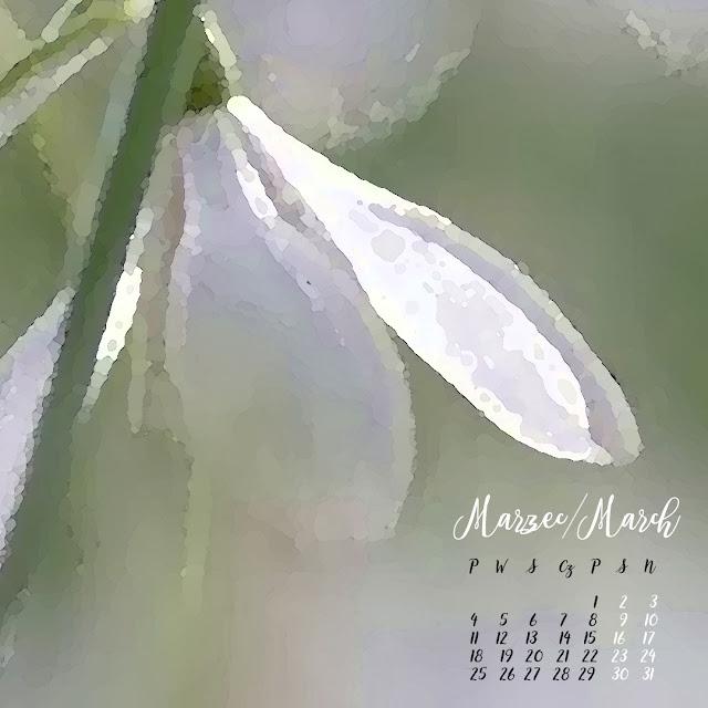 dacon-design-architekt-wroclaw-projektywnetrz-aranzacja-wiosna-marzec-kalendarz