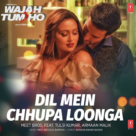 Dil Mein Chhupa Loonga - Wajah Tum Ho (2016)
