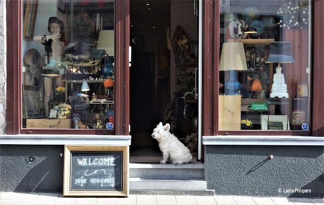praça Bij Sint-Jacobs, muitas lojas de objetos usados, brechós e antiquários nas ruas adjacentes