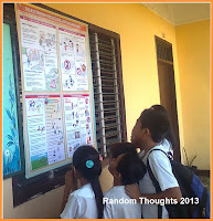 Pupils reading the disaster risk reduction and management visual aid
