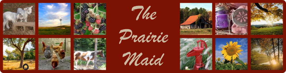 The Prairie Maid