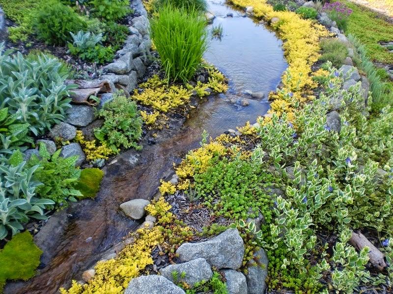 Gartenbuddelei: Zeig uns Deinen Garten! Heute: Der Garten von Annette
