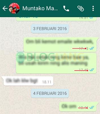 membaca pesan whatsapp tanpa ceklis biru