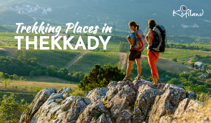 Trek in Thekkady