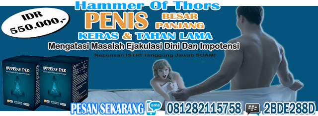 obat hammer of thor asli