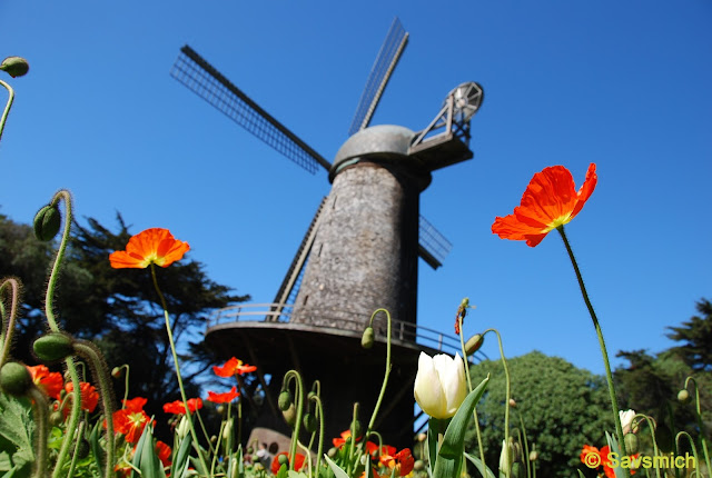 North dutch windmill