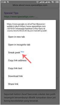 Fitur Tersembunyi Google Chrome: Sneak Peek