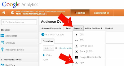 Generate a Report in Google Analytics