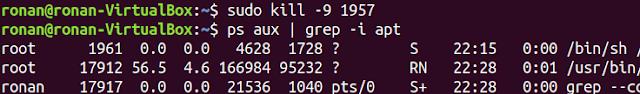 La commande sudo kill -9 1957 dans un terminal Ubuntu