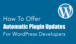 How To Offer Automatic Plugin Updates [WordPress Developers] : eAskme