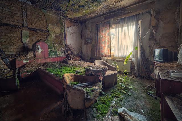غرفة بفندق مهجور يغزوها العشب والأشجار