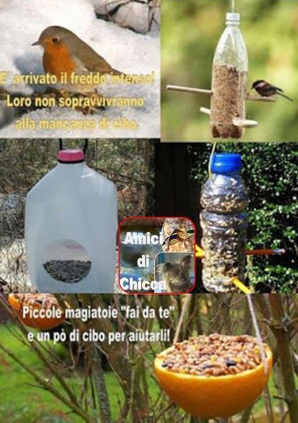 Piccole Mangiatoie Fai Da Te Per Nutrire Gli Uccelli