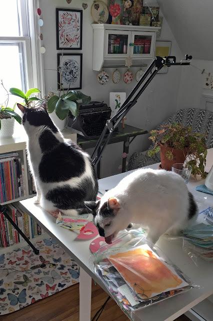 cats, studio cats, art studio, Skillshare, Anne Butera, My Giant Strawberry