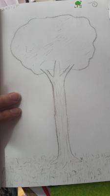 drzewo - rysunek węglem