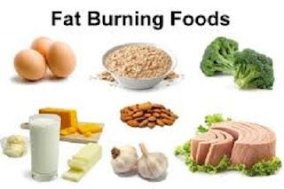 Lose weight fast diet plan