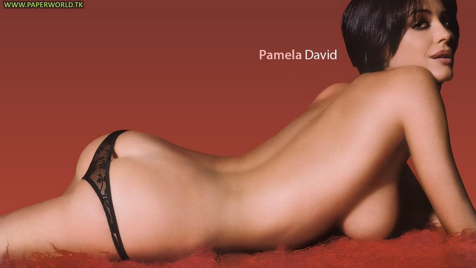 pamela david nude