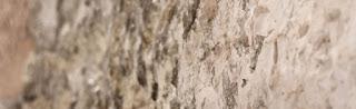lapideo pietra