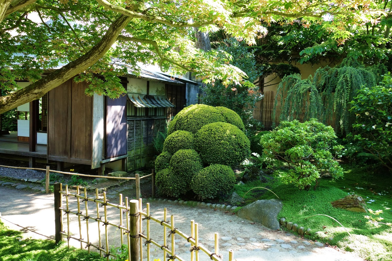 Paris village et jardin japonais au mus e albert kahn - Video bonsai jardin japonais ...