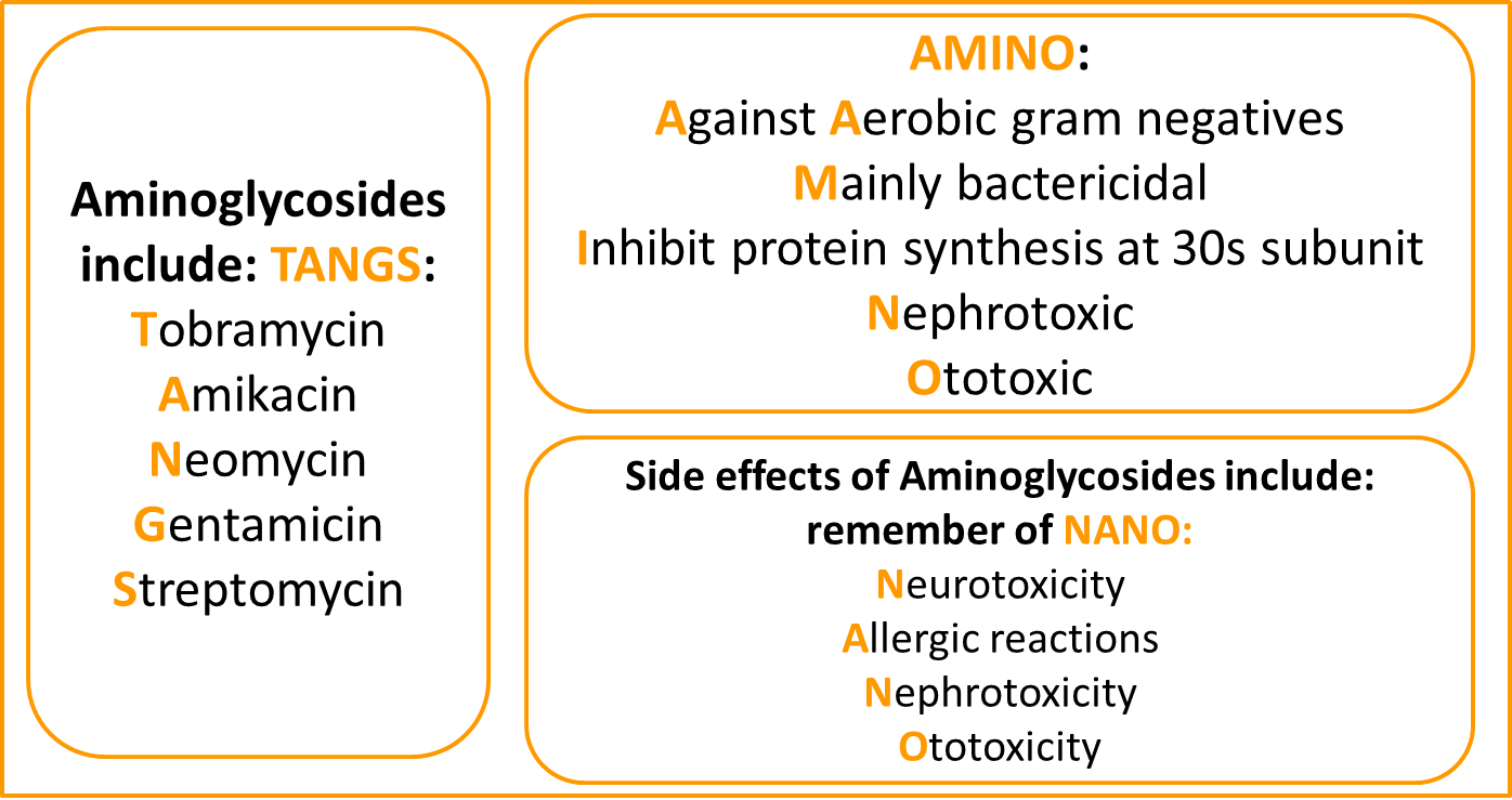 aminoglycoside antibiotics chart: cause of hearing loss in dogs