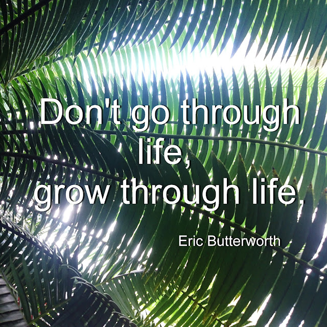 Don´t go through life, grow through life. - Eric Butterworth