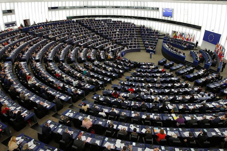 Parlamento Europeo aprueba resolución sobre los derechos Afro