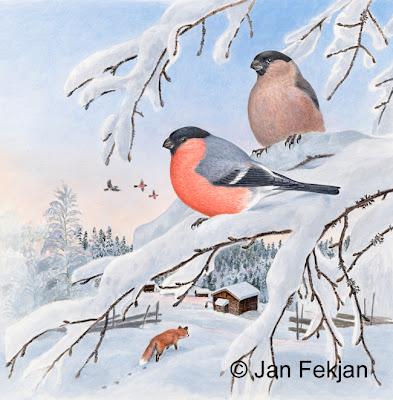 Bilde av digigrafiet 'Dompaper'. Digitalt trykk laget på bakgrunn av et maleri av fugler i vinterlandskap. Illustrasjon av to dompaper, Pyrrhula pyrrhula, som sitter på en bjørkekvist. I bakgrunnen er det en rev som lister seg mot en gård, og andre dompapper som flyr mot en klar vinterhimmel. Bildet er kvadratisk.